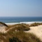 widok-na-ocean-z-parku-naturalnego-reserva-natural-das-dunas-de-sao-jacinto-niedaleko-aveiro-V1_MAIN-322